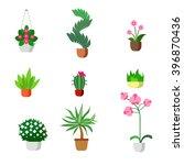 plants indoor room houseplants...   Shutterstock .eps vector #396870436