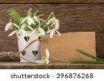 bouquet of snowdrops in... | Shutterstock . vector #396876268