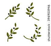 Set Of Green Vector Olive...