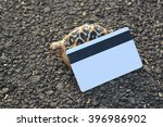turtle on asphalt  road with... | Shutterstock . vector #396986902
