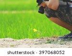 flower in field | Shutterstock . vector #397068052
