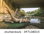 Log At Under The Bridge  ...