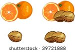 oranges and walnuts | Shutterstock .eps vector #39721888