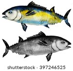 tuna fish watercolor | Shutterstock . vector #397246525