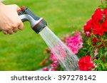 watering garden flowers with... | Shutterstock . vector #397278142