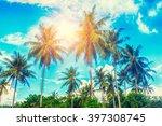Palm Trees On A Beautiful...