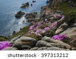 Cliffs With Midday Flowers ...