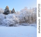 winter wonderland in a mixed... | Shutterstock . vector #397352722