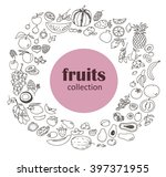 collection of the fruits... | Shutterstock .eps vector #397371955