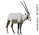 Antelope Series Arabian Oryx