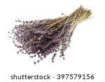 beautiful bouquet of lilac... | Shutterstock . vector #397579156