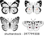 Stock vector butterfly vector set of hand draw insect 397799308