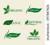 organic natural logo design... | Shutterstock .eps vector #397887826