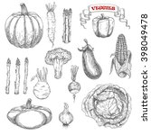 old fashioned sketches of ripe... | Shutterstock .eps vector #398049478