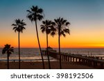 Palm Trees Over The Los Angele...
