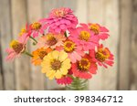 Bouquet Of Zinnia Flowers