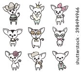 Collection Of Cute Chihuahua...