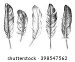 hand drawn feathers set on... | Shutterstock . vector #398547562