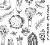 vector vegetable hand drawn... | Shutterstock .eps vector #398560606