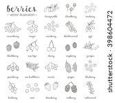 hand drawn outline berries... | Shutterstock .eps vector #398604472