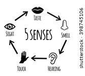 five senses   educational...   Shutterstock . vector #398745106