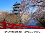 Постер, плакат: Cherry blossoms at the