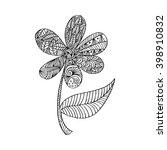 doodle flower   Shutterstock .eps vector #398910832