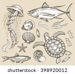 hand drawn sketch set marine... | Shutterstock .eps vector #398920012