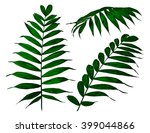 fern set | Shutterstock . vector #399044866