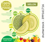 cantaloupe melon. infographic... | Shutterstock .eps vector #399161716