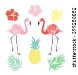 Vector Tropical Clipart Set ...