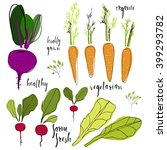 collection of  vegetables. set... | Shutterstock .eps vector #399293782