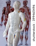 Small photo of acupuncture figure with poster at background