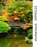Beautiful Garden With Bridge...