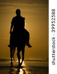 The Horse Rider On The Beach...