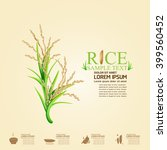 rice vector template | Shutterstock .eps vector #399560452