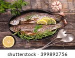 Small photo of grilled fish,trout