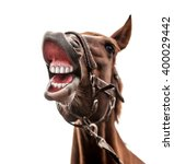 Funny Portrait Of Smiling Hors...