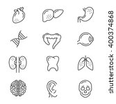 human organs line icons. human... | Shutterstock .eps vector #400374868