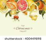 vector vintage citrus banner... | Shutterstock .eps vector #400449898
