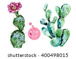 vector cactus isolated on white ... | Shutterstock .eps vector #400498015