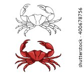 Vector Linear Sketch Of A Crab...
