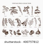 vector set of hand drawn spices ... | Shutterstock .eps vector #400757812