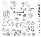 Molluscs Set Vector...