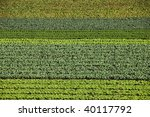 Green field with horizontal strips