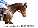 Stock photo racing horse portrait isolated on white 401238232