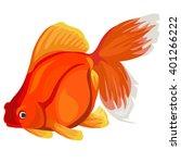 Carassius Auratus  Gold Fish ....