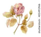 Single Gentle Pink Rose...