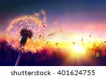 Dandelion To Sunset   Freedom...