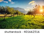 fantastic views of the garden... | Shutterstock . vector #401662516